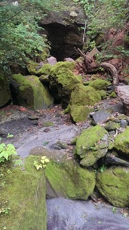 苔の洞門観覧台手前