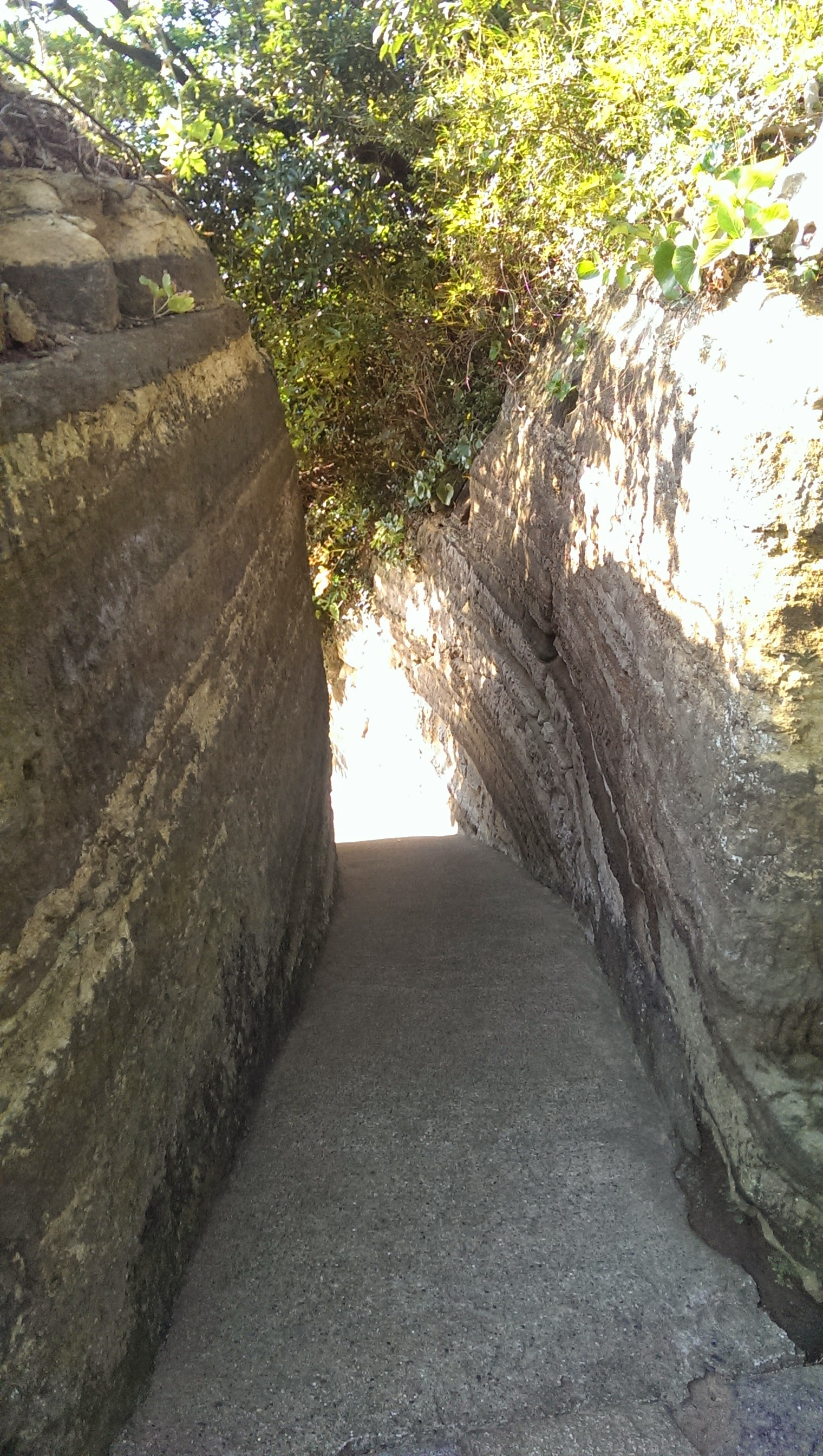 観音埼灯台への通路