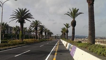 横須賀海岸通り